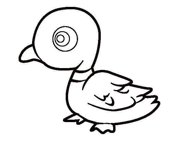 Dibujos De Patos Para Colorear Para Niños: Dibujo De Pato De Río Para Colorear