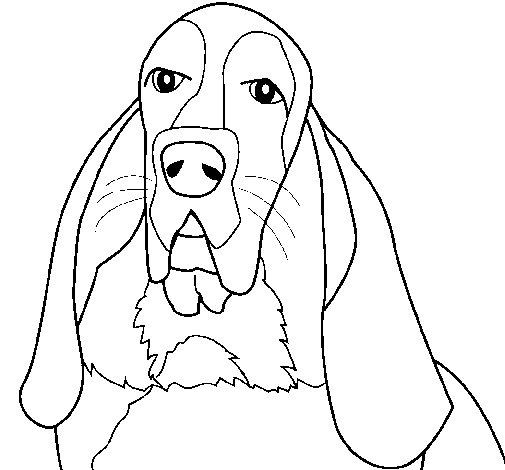 Dibujo de Perro 3 para Colorear