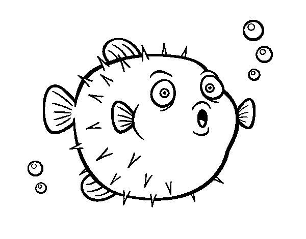 Worksheet. Dibujo de Pez globo para Colorear  Dibujosnet