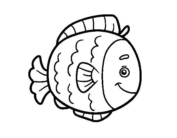Dibujo de Pez infantil para Colorear  Dibujosnet