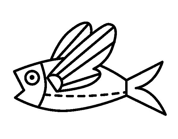 Como Dibujar La Maquina Voladora: Dibujo De Pez Volador Para Colorear