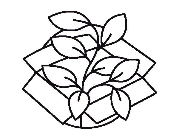 Dibujo de Planta ecològica para Colorear