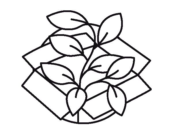 Dibujo de planta ecol gica para colorear for Plantas ornamentales para colorear