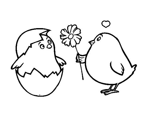 Dibujo de Pollitos enamorados para Colorear  Dibujosnet