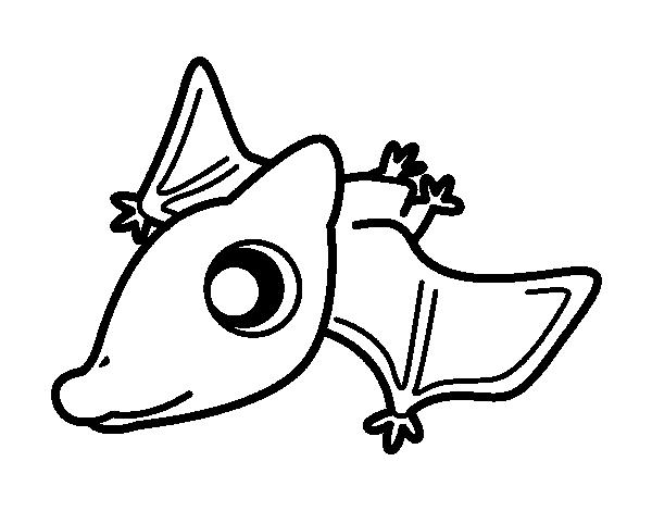 Dibujo de Pterodáctilo bebé para Colorear - Dibujos.net