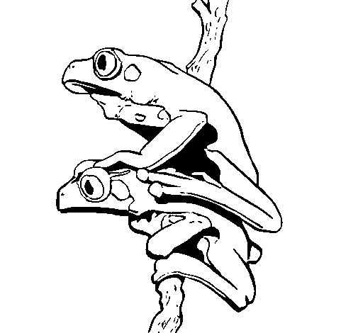 Worksheet. Dibujo de Ranas para Colorear  Dibujosnet