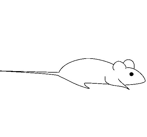 Dibujo de Rata 1 para Colorear