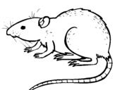 Dibujo de Rata subterráena para colorear