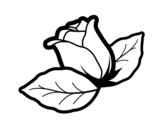 Dibujo de Rosa con hojas para colorear