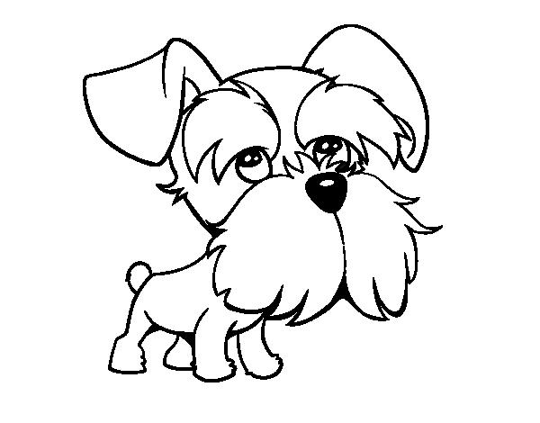 Un Dibujo De Un Perro Para Colorear: Dibujo De Perro Schnauzer
