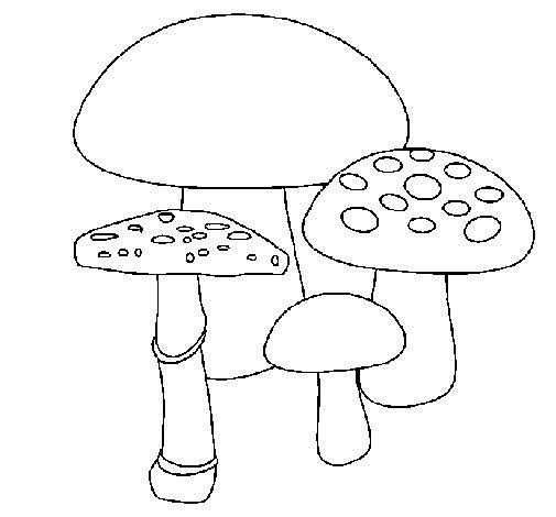 Dibujo de Setas 2 para Colorear