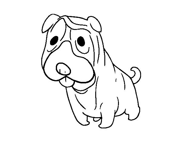 Dibujo De Perro San Bernardo Para Colorear Dibujos Net