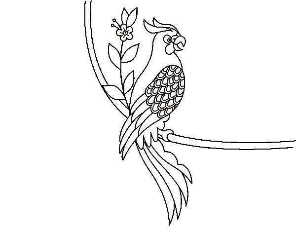 Dibujo de Tatuaje de loro para Colorear  Dibujosnet