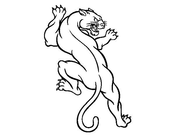 Dibujo de Tatuaje de puma para Colorear