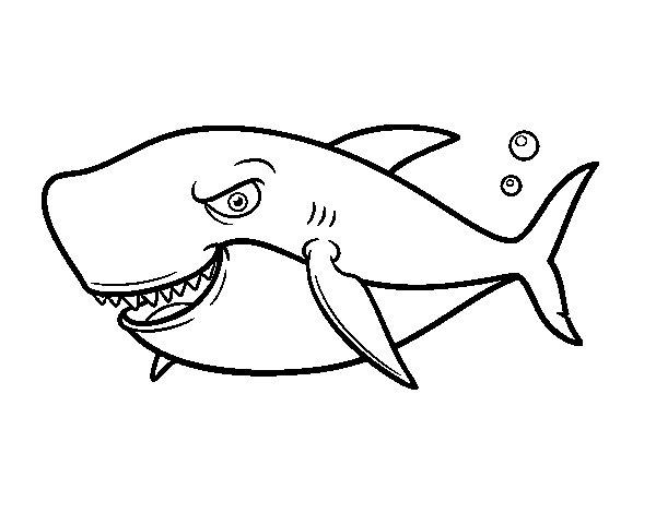 Dibujos Animados De Tiburones Para Colorear: Dibujo De Tiburón Dentudo Para Colorear
