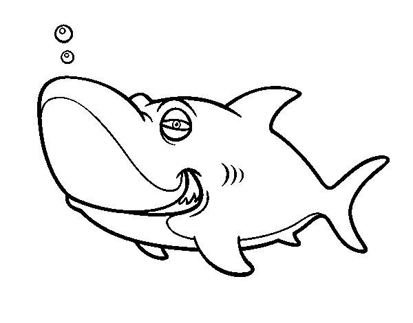 Dibujos Animados De Tiburones Para Colorear: Dibujo De Tiburón Tigre Para Colorear