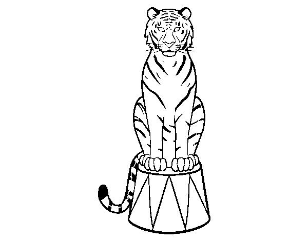 Dibujos Para Pintar De Tigres Y Leones Para Colorear Dibujos Para