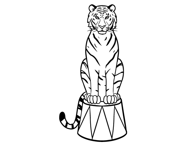 Dibujos De Caras De Tigres Para Colorear: Dibujo De Tigre De Circo Para Colorear