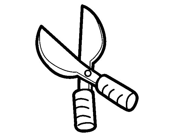 Dibujo de tijeras de podar para colorear for Jardin dibujo