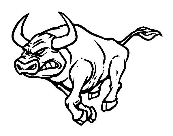 Dibujo de Toro furioso para Colorear  Dibujosnet