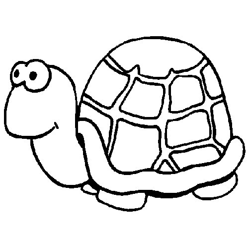 Dibujo de Tortuga 1 para Colorear