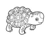 Dibujo de Tortuga estrellada de la India para colorear