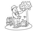 Dibujo de Un agricultor para colorear