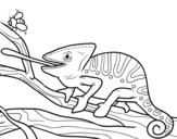 Dibujo de Un camaleón con la lengua fuera para colorear