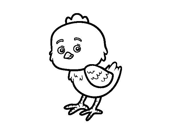 Dibujo de Un pollito pio para Colorear  Dibujosnet