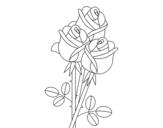 Dibujo de Un ramo de rosas