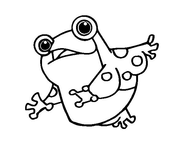 Dibujo de un sapo para colorear - Dessin d un crapaud ...