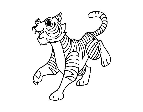 Dibujos De Caras De Tigres Para Colorear: Dibujo De Un Tigre De Bengala Para Colorear