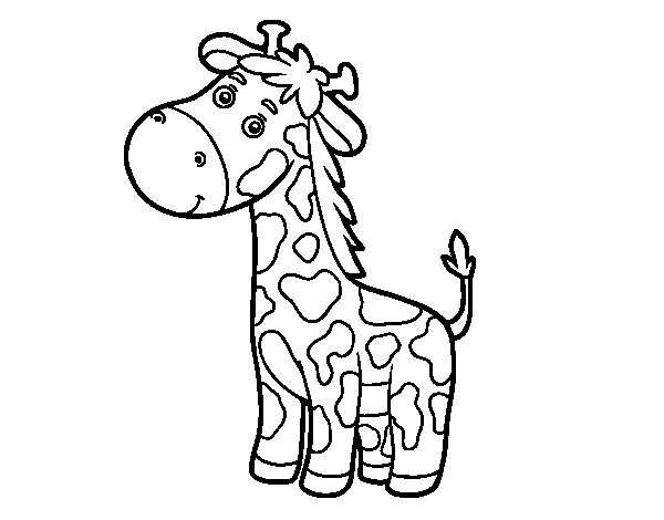 Dibujo de Una jirafa para Colorear  Dibujosnet