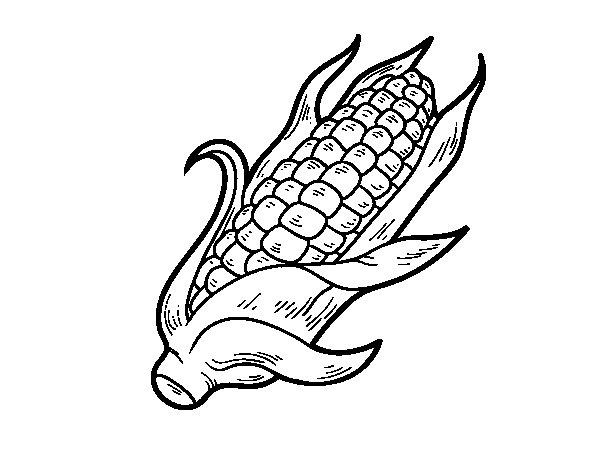 Dibujo de Una mazorca de maíz para Colorear