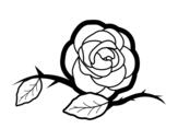 Dibujo de Una preciosa rosa