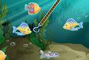 Jugar a Pescapez de la categoría Juegos de habilidad