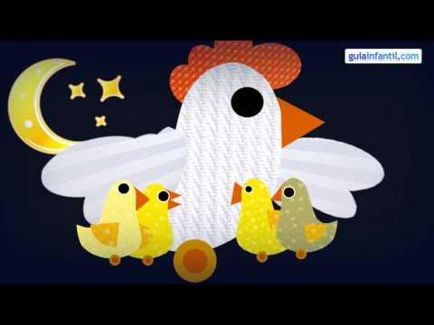 ¿Qué hacen los pollitos?