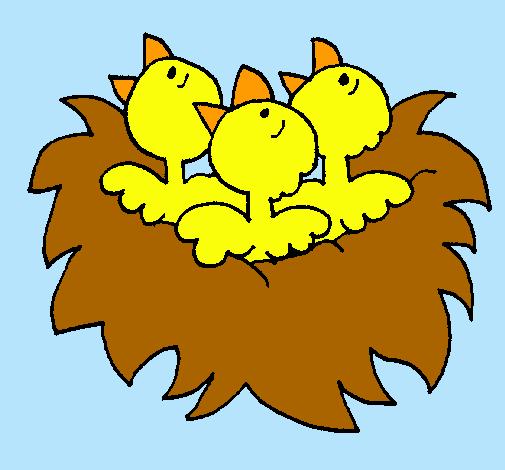 Dibujo De Nido De Pájaritos Pintado Por Pollitos En Dibujos