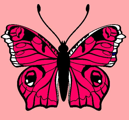 Dibujo De Mariposa Pintado Por Nely En Dibujosnet El Día 16 08 10 A