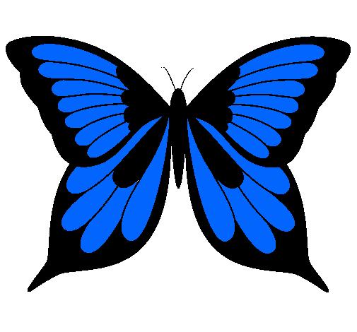 Dibujo de Mariposa pintado por -  6.3KB