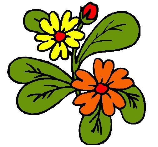 Dibujo De Flores Pintado Por Colores En Dibujosnet El Día 16 08 10