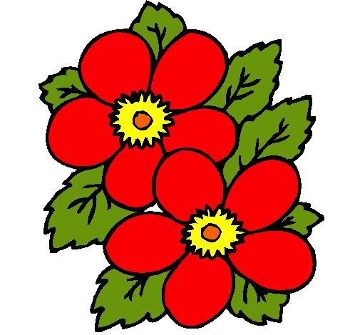 Dibujo De Flores Pintado Por Rojas En Dibujos Net El Dia 25 08 10 A
