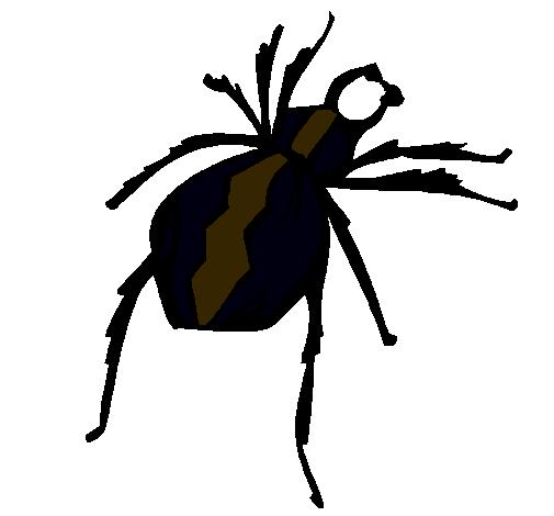 Dibujo de Araña viuda negra pintado por Blanca en Dibujos.net el día ...