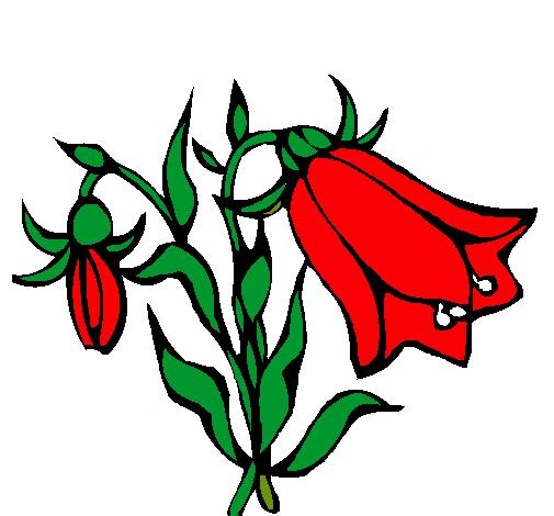 Dibujo De Flores Silvestres Pintado Por Copihue En Dibujos Net El