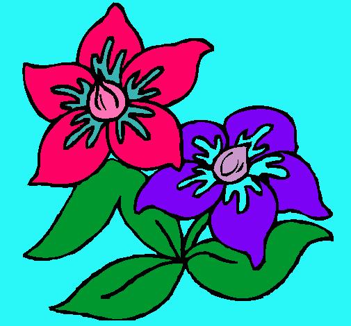Dibujo De Flores Pintado Por Jazmin En Dibujosnet El Día 26