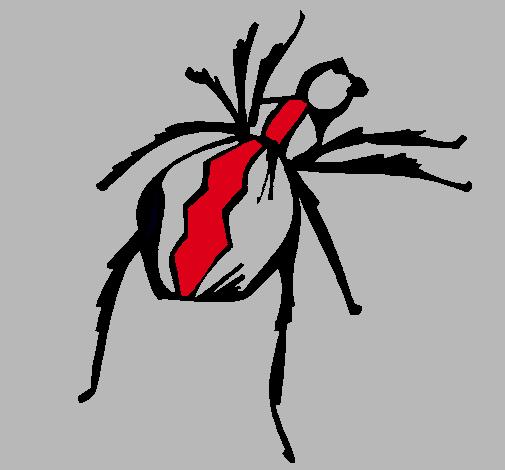 Dibujo de Araña viuda negra pintado por Isaac-emmanuel en Dibujos ...