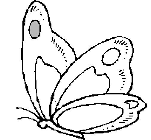 Dibujo de Mariposa pintado por Buho en Dibujos.net el día 18-10-10 a ...