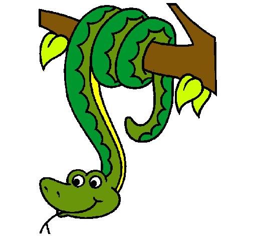 Dibujo De Serpiente Colgada De Un árbol Pintado Por Paco En Dibujos
