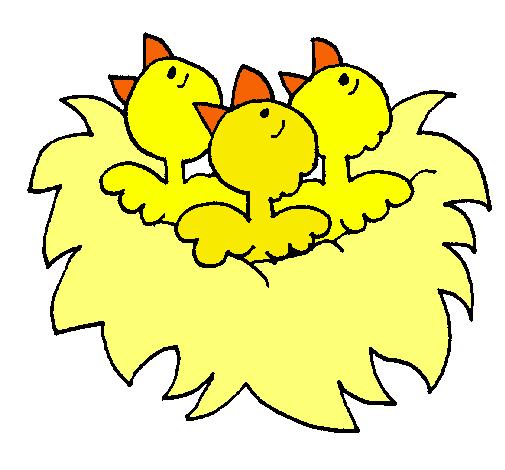 Dibujo De Nido De Pájaritos Pintado Por Deni En Dibujosnet