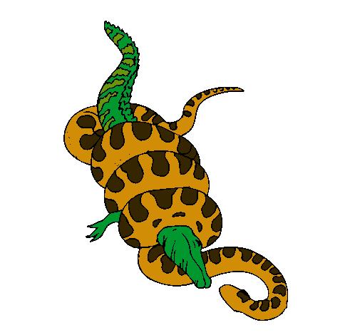 Dibujo de Anaconda y caimán pintado por Gracia en Dibujos.net el día ...